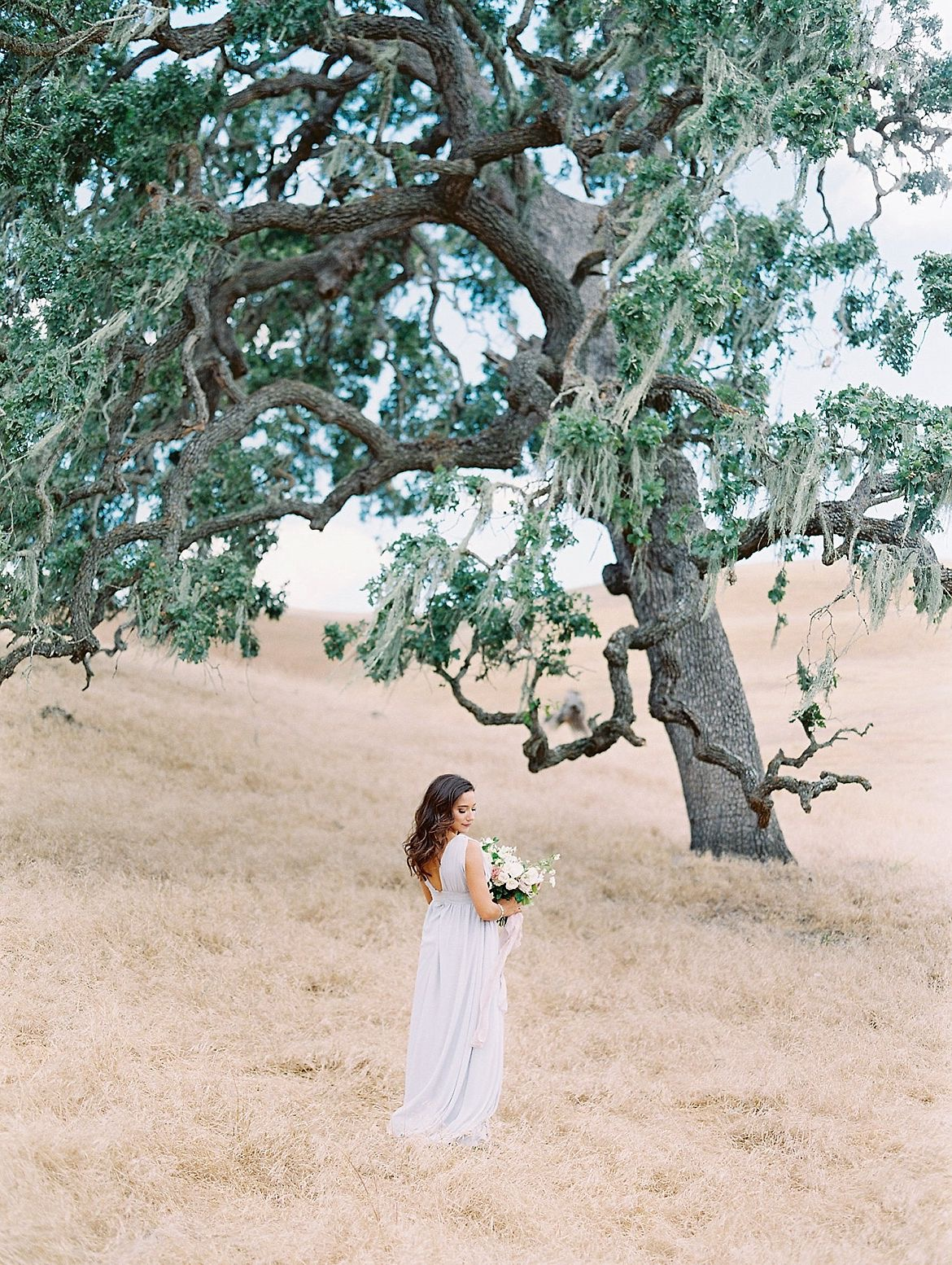 California Hills Engagement