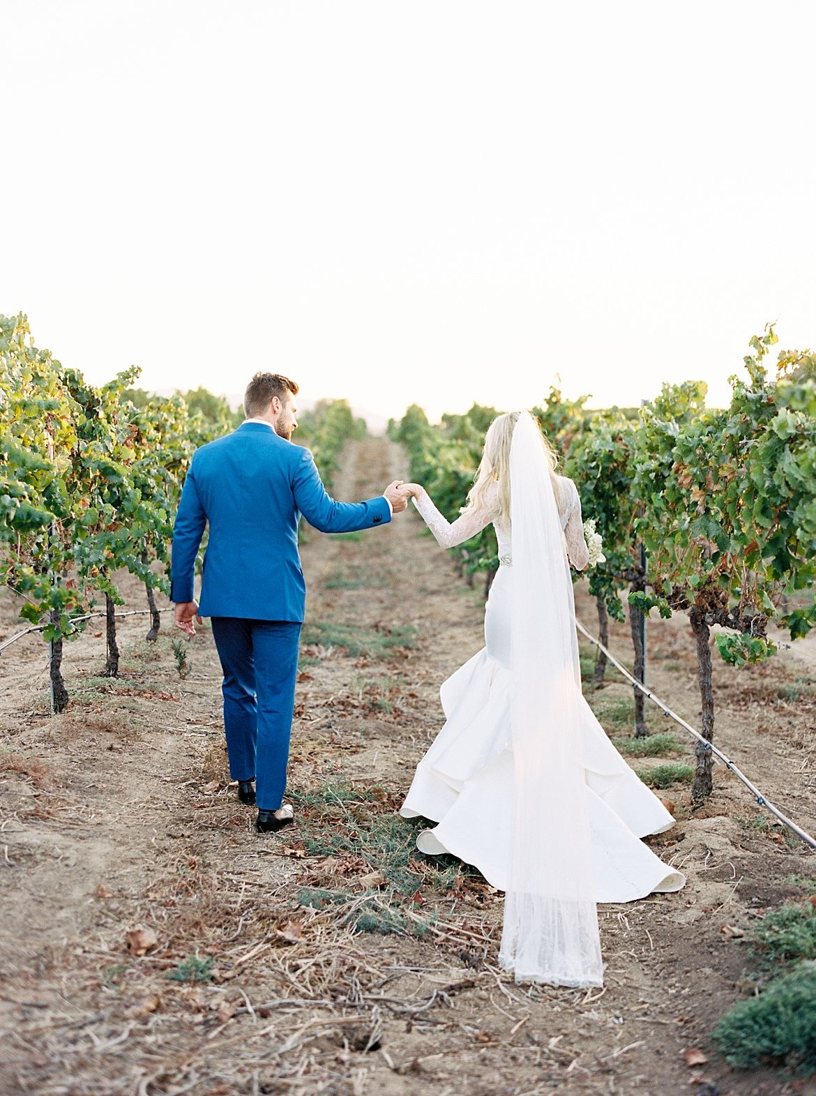 Refined Vineyard Wedding