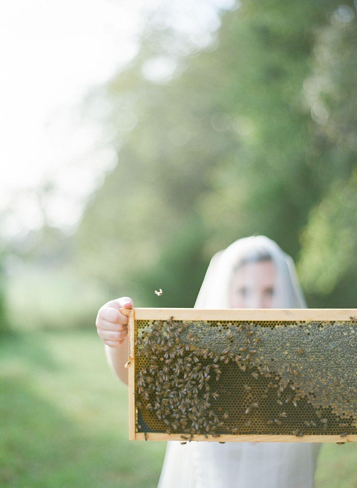 Best Film Photography Wedding Blog